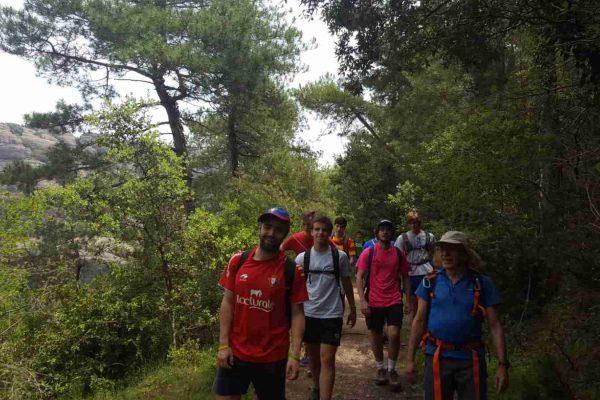 paso_pirineos (6)